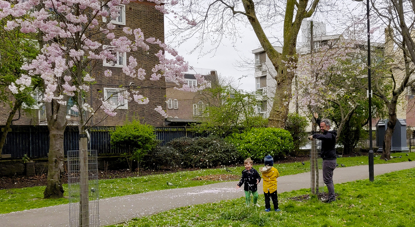 Children and blossoms, Meath Gardens
